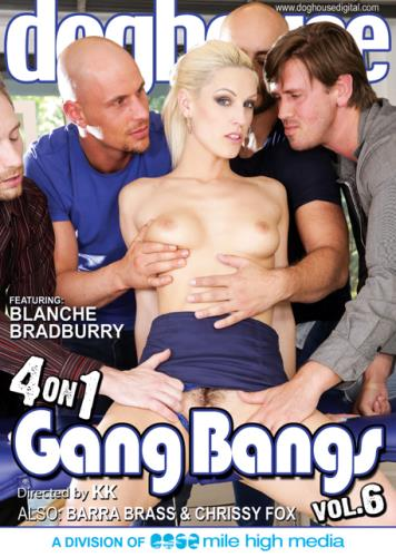 4 On 1 Gang Bangs 6 (HD/3.41 GB)