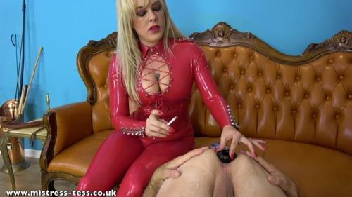 Mistress Tess - Asshole Ashtray [FullHD, 1080p] [Clips4sale.com, Mistress-Tess.co.uk]