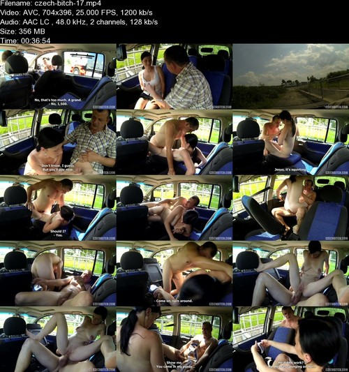 Amateur - Taxi Driver Fuck Cheap Whore [SD 396p] - CzechBitch.com