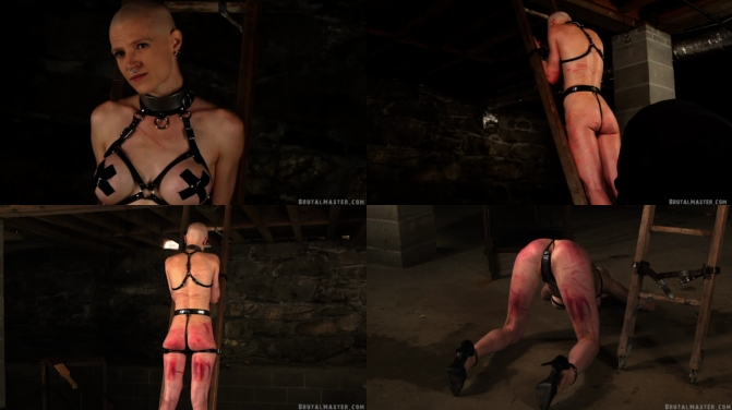 [Greyhound - 30.Nov.19] On The Ladder In The Dungeon - BrutalMaster.com [dungeon, bound, beaten, whips, straps, bruised, battered, piece of cuntmeat, Torture Ladder, agony, torture, sadistic]_cover.jpg