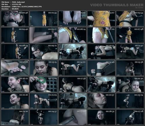 Newbie Knockout - Shae Celestine