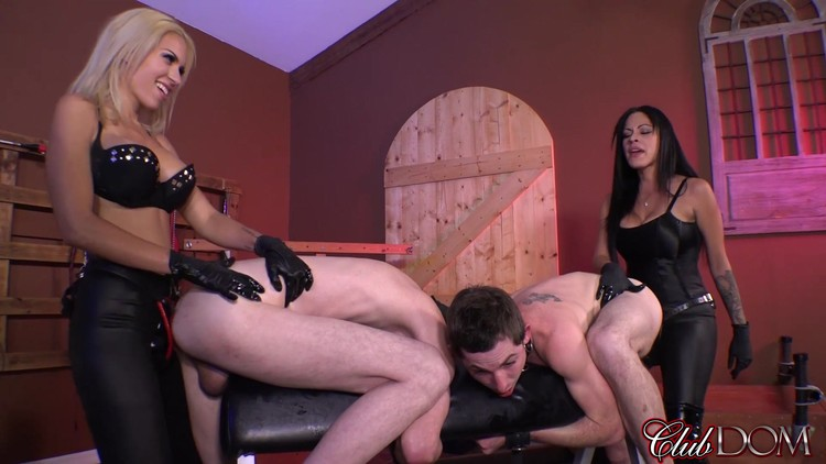 [Image: Chanel_Preston_-_Give_me_Head.mp4.00002_l.jpg]